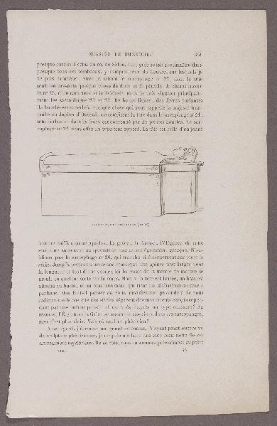 Gazette des Beaux-Arts ; Mission de Phénicie ; Sarcophage Phénicien (N°23)_0