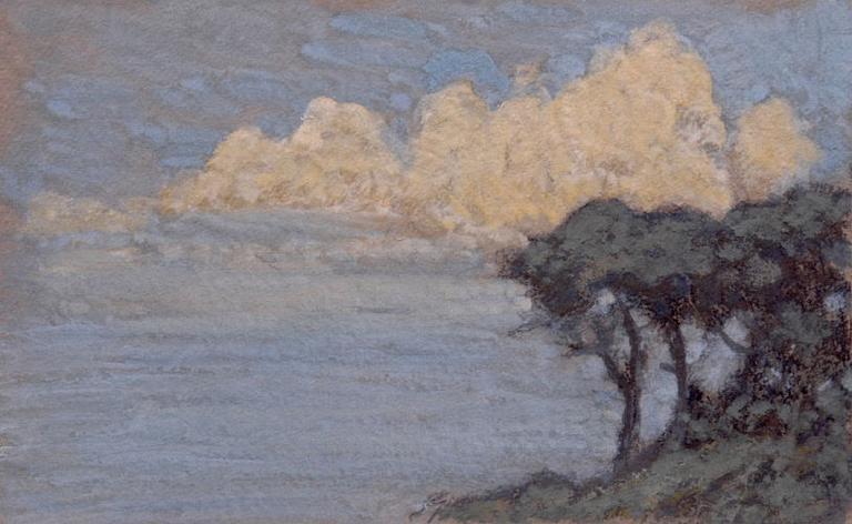 Effet de nuages sur les pins. Bord de mer_0