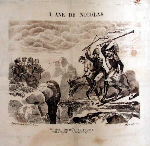 L'âne de Nicolas_0
