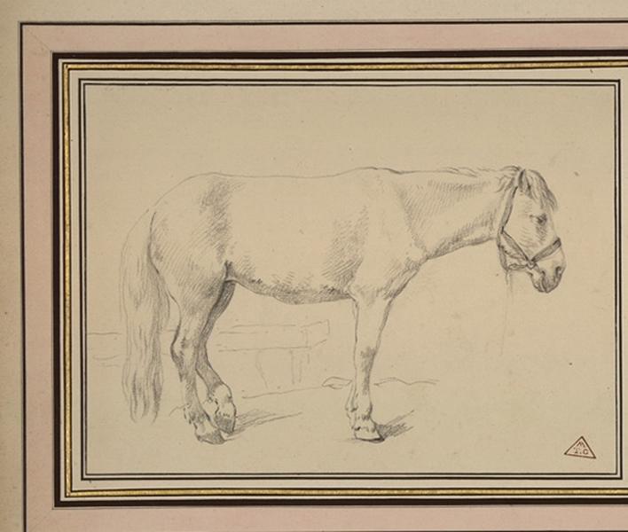 Deux chevaux de trait_0
