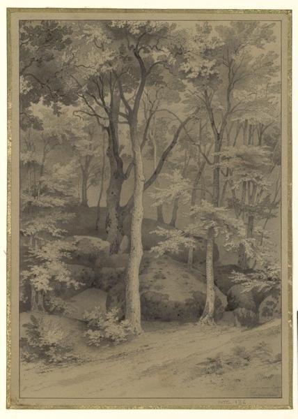 La gorge aux loups, Fontainebleau
