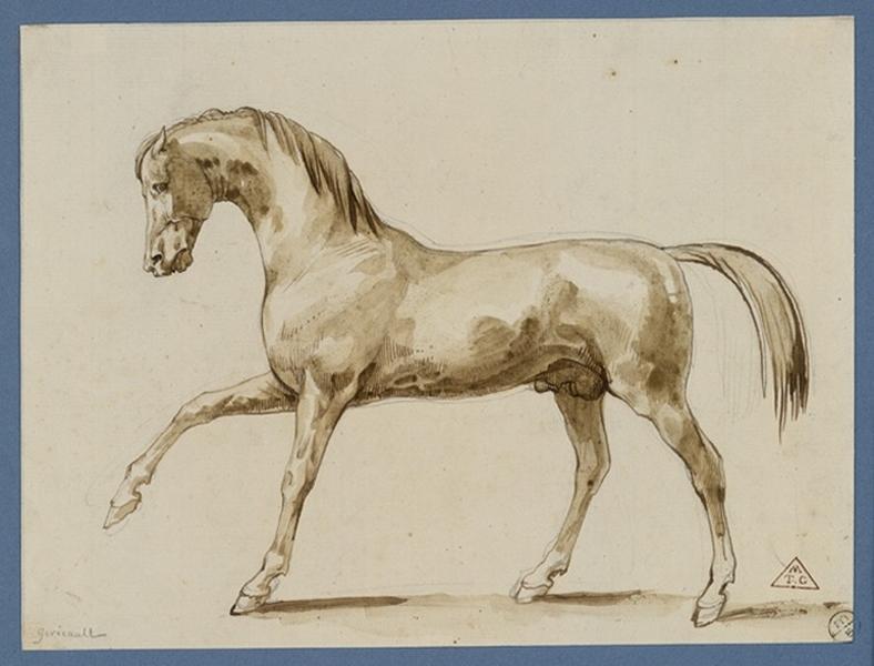 Croquis d'un cheval ; Cheval de profil (autre titre)