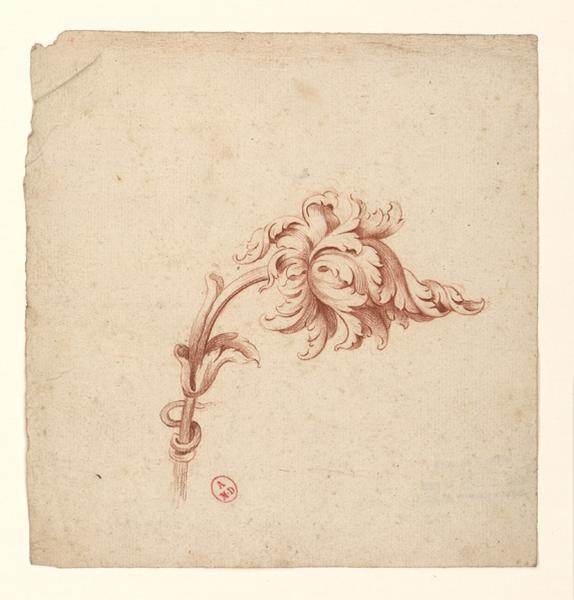 anonyme : Rinceaux de feuillages décoratifs