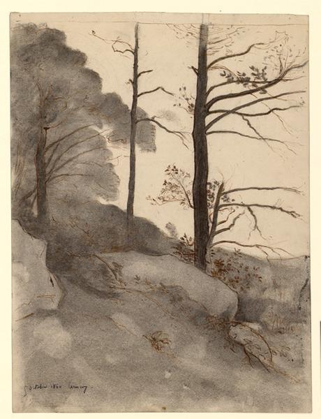 Arbres dans les rochers à Cernay_0