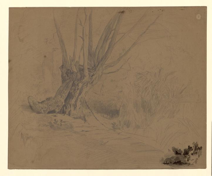 NANTEUIL-LEBOEUF Paul Célestin Louis, NANTEUIL Paul (dit) : Une nasse appuyée à un saule, Etude d'arbre