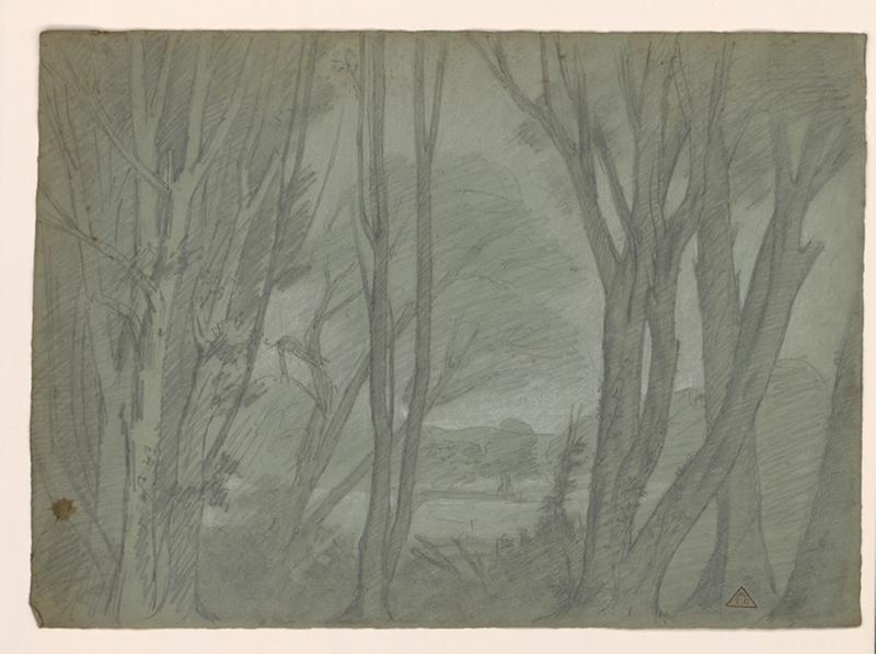 Etude d'arbres_0