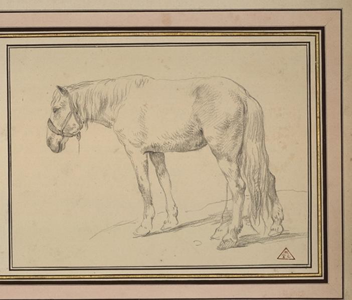Deux chevaux de trait