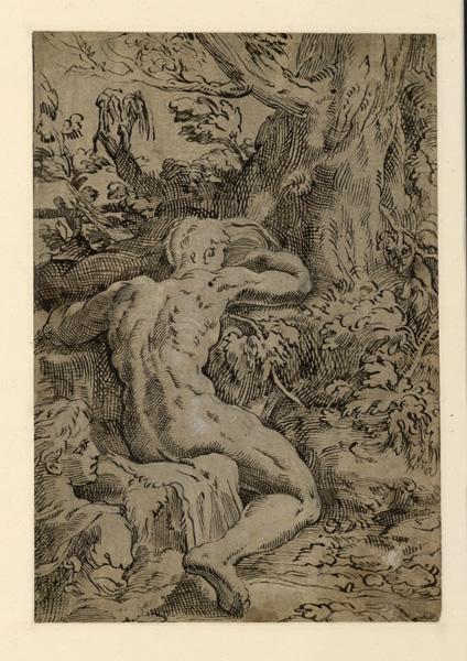 Narcisse ; Un homme vu de dos .... (semble occupé à chercher ou à fouiller entre les racines d'une arbre (ancien titre))