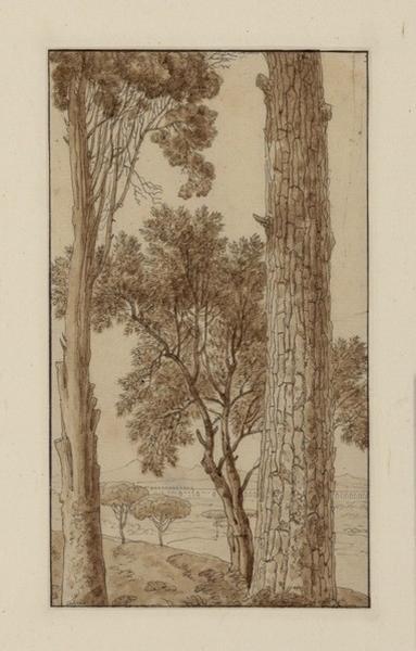 Vue prise de la villa Borghése (des pins)._0
