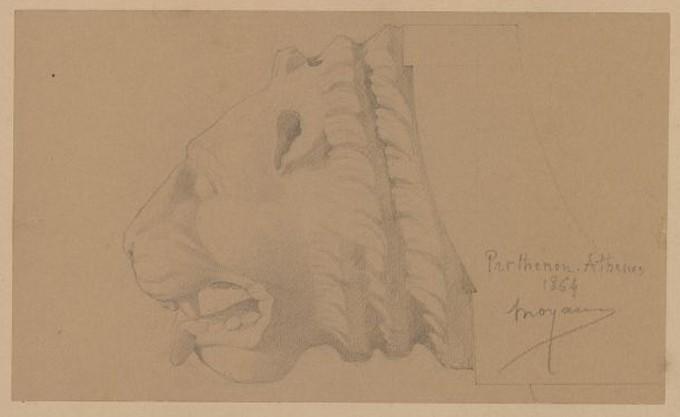 MOYAUX Constant (dessinateur) : Profil d'une tête de lion du Parthénon d'Athènes