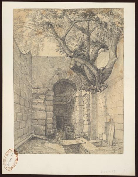 Edifice en ruine, un arbre en sort_0