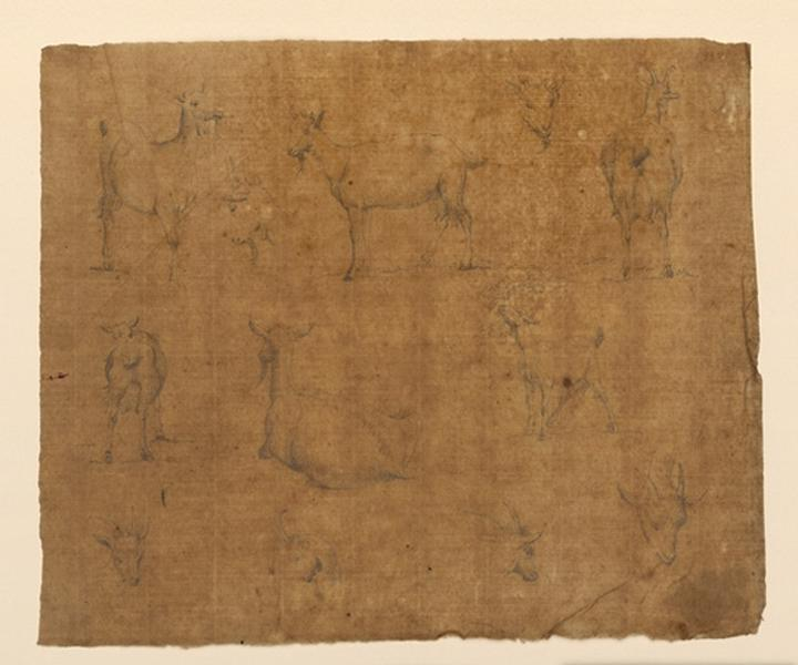 TURPIN DE CRISSE Lancelot Théodore Comte de : Etudes de chèvres