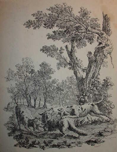 Le chat et le renard, IX, 14_0