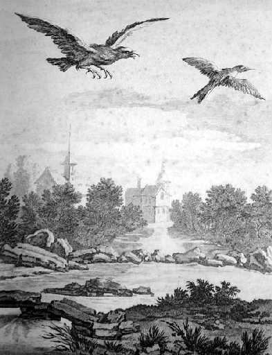 L'aigle et la pie, XII, 11_0