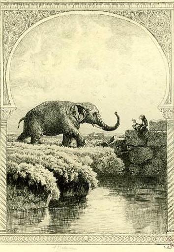L'Eléphant et le Singe de Jupiter, XII, 21_0
