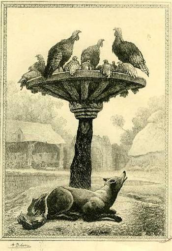 Le Renard et les Poulets d'Inde, XII, 18_0