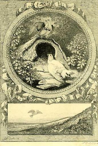 Les Deux Pigeons, IX, 2_0