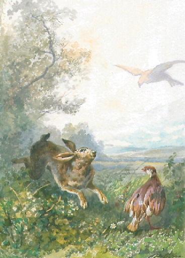 Le Lièvre et la Perdrix, V, 17_0