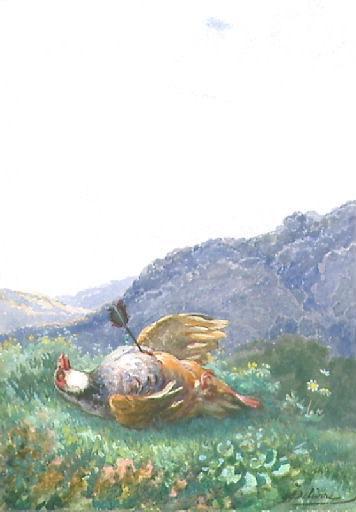 L'Oiseau blessé d'une flèche, II, 6_0