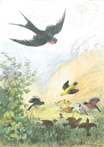L'Hirondelle et les petits Oiseaux, I, 18_0