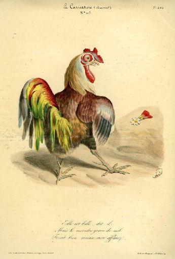 Le Coq et la Perle, I, 20_0