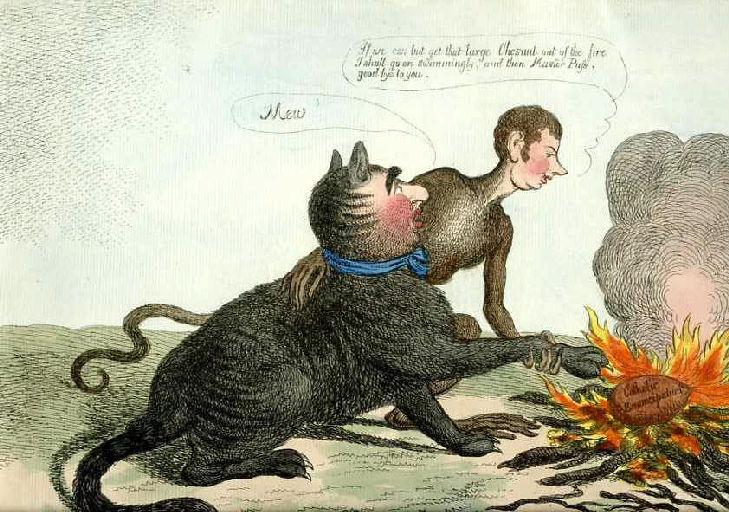 The Monkey and the Cats Paw a fable from Esop ; Le Singe et le Chat, IX, 17