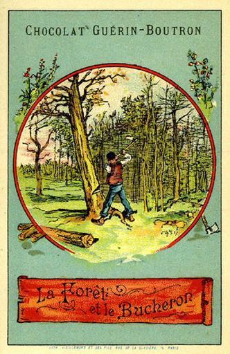 La Forêt et le Bûcheron, XII, 16 (Le texte de la fable est reproduit au revers)