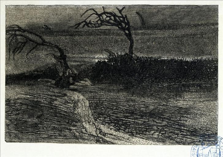 Album de gravures d'après les dessins de Victor Hugo pour les Travailleurs de la mer : Tourmente, arbres tordus (planche 35) - 1882_0