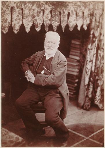 Victor Hugo dans le Look-out à Hauteville House en 1878_0