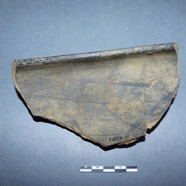 coupe (fragment)