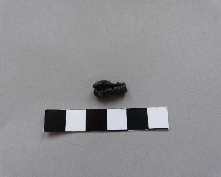 Fibule (fragment)_0