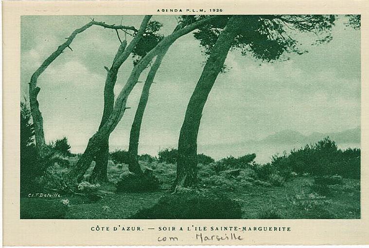 COTE D'AZUR. - SOIR A L'ILE SAINTE-MARGERITE_0