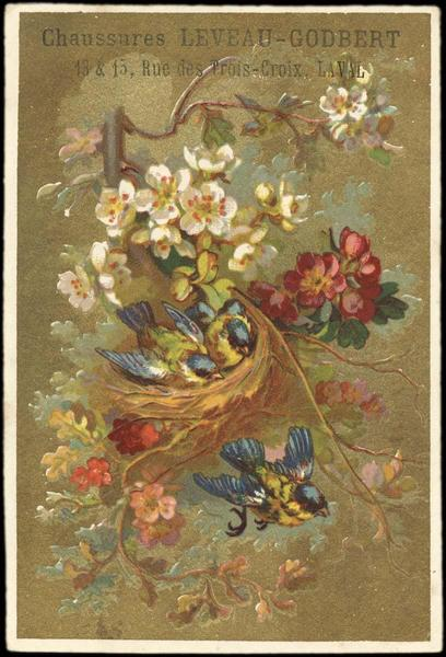 Nid dans les fleurs (titre factice)
