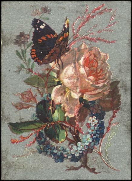 Papillon sur un bouquet (titre factice)