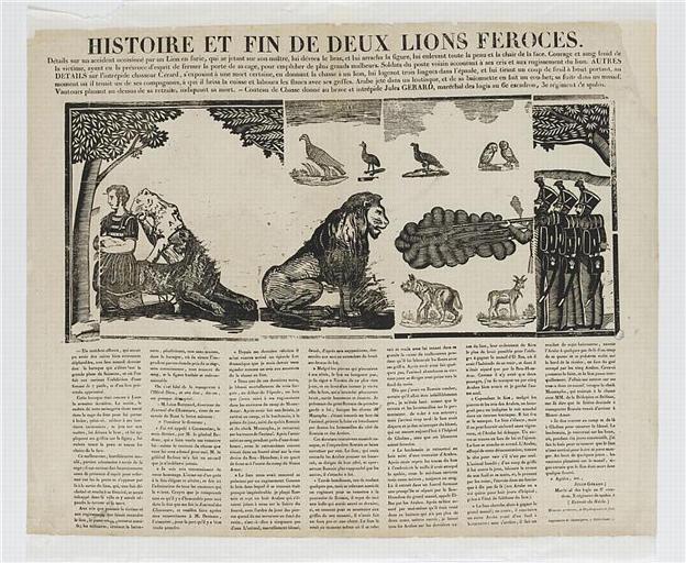 HISTOIRE ET FIN DE DEUX LIONS FEROCES (titre inscrit)