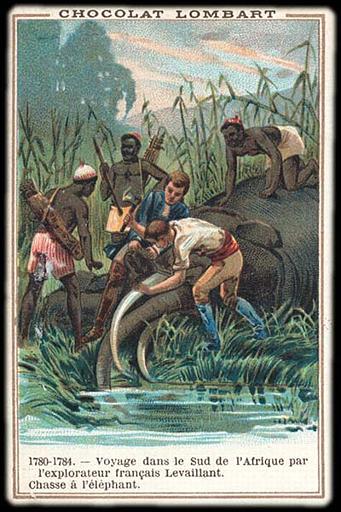 1780-1784. - Voyage dans le Sud de l'Afrique par / l'explorateur français Levaillant. / Chasse à l'éléphant (titre inscrit)