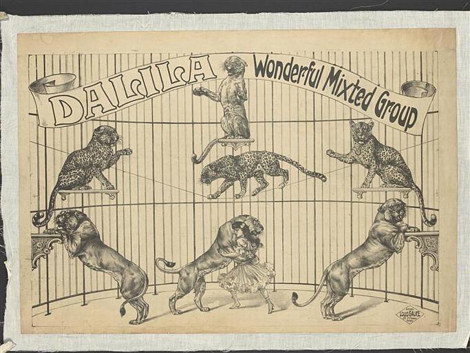 DALILA Wonderful Mixted Group (titre inscrit)_0