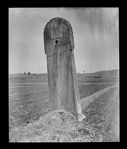 [Jiangsu]. Région de Nankin [Nanjing], Yao-houa men [Yaohuamen], [Ganjiaxian], allée funéraire de Siao Tan [Xiao Dan] (mort en 522 ap. J.-C.), stèle sur tortue