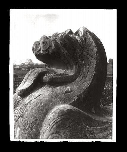 [Jiangsu]. Région de Nankin [Nanjing], Yao-houa men [Yaohuamen], [Ganjiaxian], allée funéraire de Siao King [Xiao Jing] (mort en 528 ap. J.-C.), lion ailé, tête