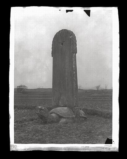anonyme (photographe) : [Jiangsu]. Région de Nankin [Nanjing], Ki-lin men [sic], allée funéraire de Hiao Hong [Xiao Hong] (mort en 527 ap. J.-C.), stèle et tortue