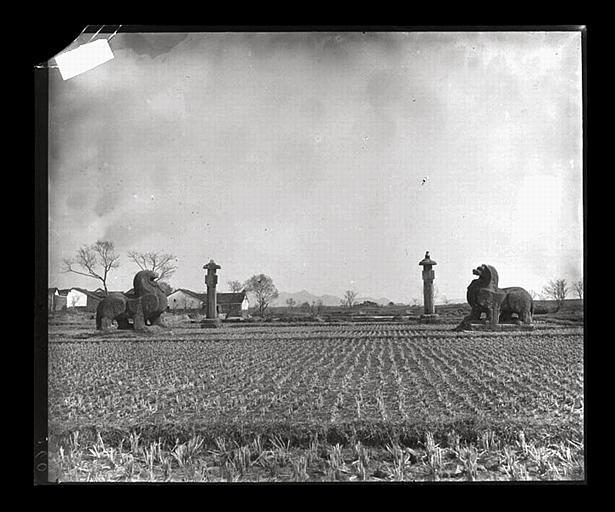 anonyme (photographe) : [Jiangsu]. Région de Nankin [Nanjing], [Jurong], Che-che kan [sic] [Shishicun], allée funéraire de Siao Tsi [Xiao Ji] (mort en 529 ap. J.-C.), ensemble