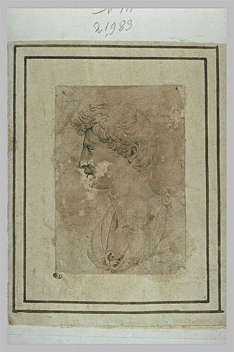 Buste d'homme, vu de profil à gauche