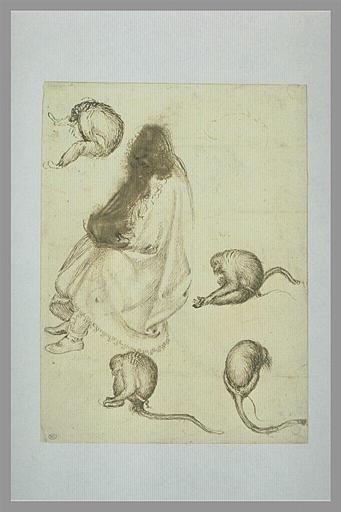 PISANELLO Antonio : Etude de cinq paons