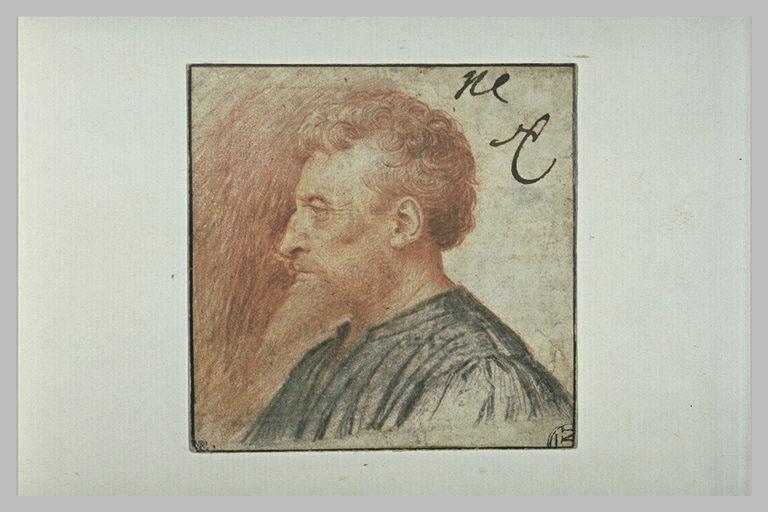 Tête d'homme vue de profil et tournée vers la gauche