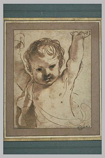 BARBIERI Giovanni Francesco : Etude pour un putto, vu en buste, les bras levés