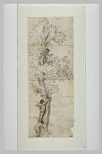 Un amour dans un arbre sur lequel monte un autre amour, aidé d'un enfant_0