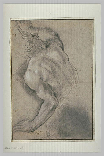 Demi-figure d'homme nu, de dos, regardant vers la droite
