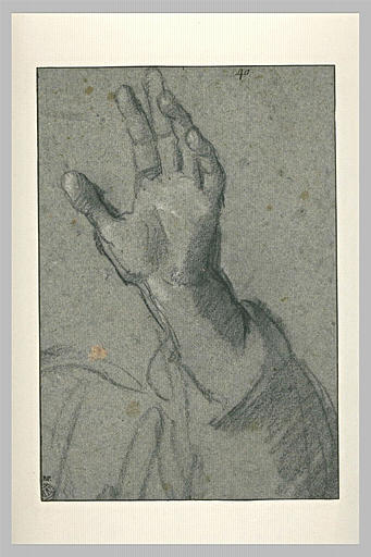 Etude de main gauche levée, le bras ployé et drapé