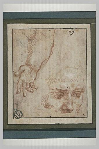 Un avant-bras et un visage