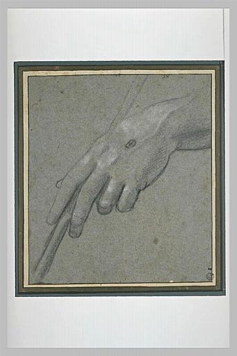 Main gauche, vue de dessus, portant un stigmate, tenant un bâton